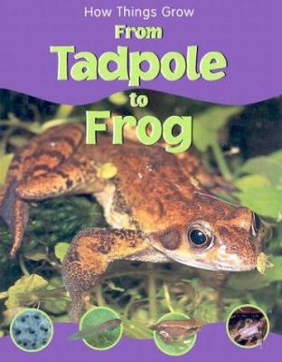 From tadpole to frog Book cover